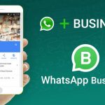 10 Reasons Everyone Loves WhatsApp for Business