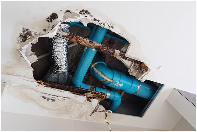 Leaky pipes and poor ventilation