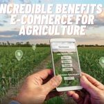 5 Incredible Benefits Of E-Commerce For Agriculture (E-Agriculture Online Selling)