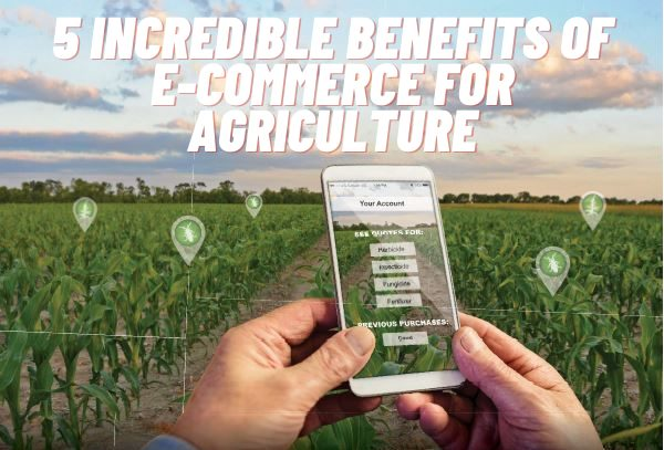 5 Incredible Benefits Of E-Commerce For Agriculture