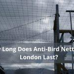 How Long Does Anti-Bird Netting in London Last?